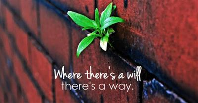 Where There Is A Will, There Is Way