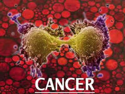 Cancer And It's Various Types