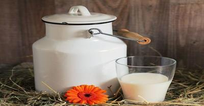 Adulteration of Milk with Melamine