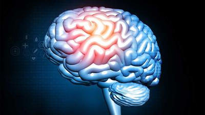 Can Brain Damage From Drugs Be Reversed?